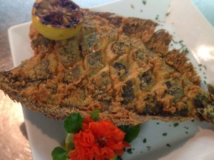 crisp-flounder
